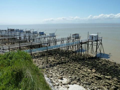 L'estuaire de la Gironde, le plus grand estuaire d'Europe